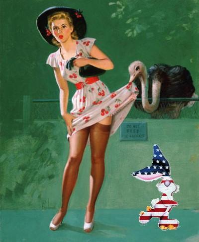 patriotic pinup art frahm zoo